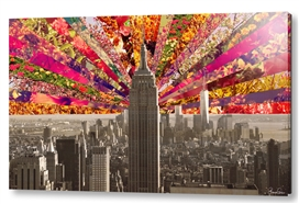 Blooming NY