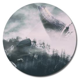 The Whale Myth