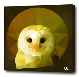 Polygon Owl