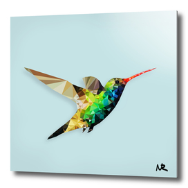 Polygon Hummingbird