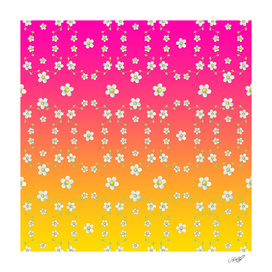 Spring Floral on pink and yellow ombre