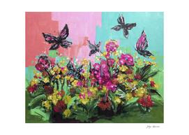 hello butterflies
