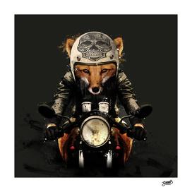 FOX-biker