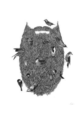 Bird Beard