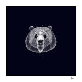 Fantasy Silver Bear