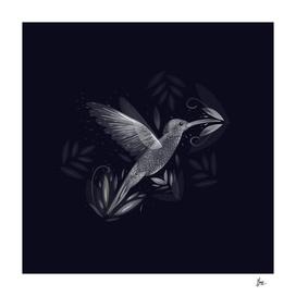 Colibri silver world