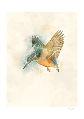 Geo Kingfisher Watercolor