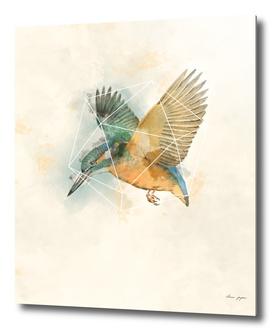 Geo Kingfisher Watercolor