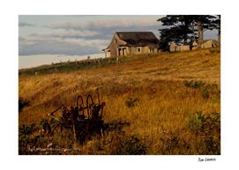 Jack Allen's - Waldren Island
