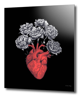 Heart with peonies on black