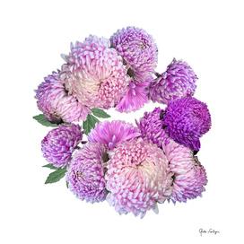Floral rhapsody