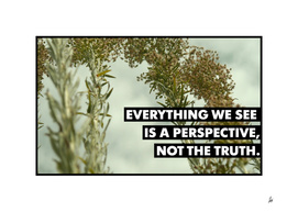 Everything We See is a Perspective