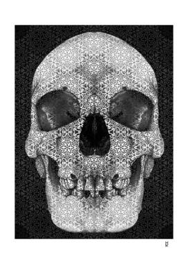 Cranial Oblivion Dark