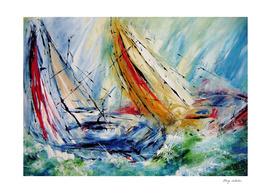 wild sails