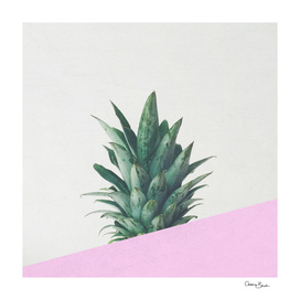 Pineapple Dip