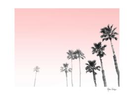 Tranquillity - pink sky