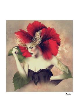 Lady Hibiscus