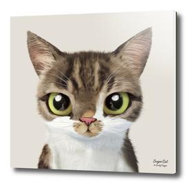 Mackerel the cat