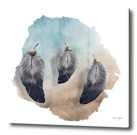 Trio (Feathers)
