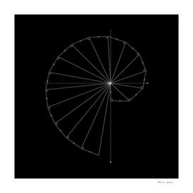 Geometric Snail