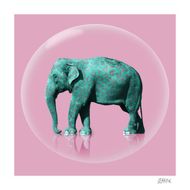 Elephant bubble