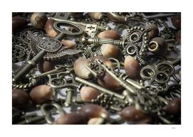 The Key to Acorns