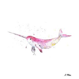 Unicorn Dolphin