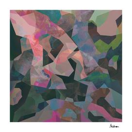 Camouflage XXIV