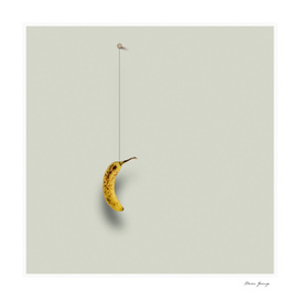 banana hanging on the wall