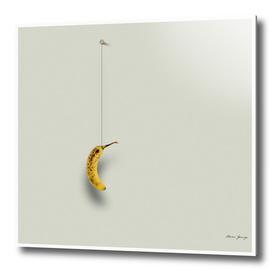 banana hanging on the wall