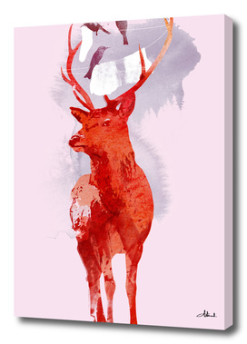 useless_deer