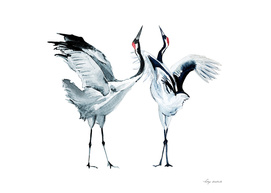 Cranes watercolor