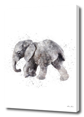 Elephant watercolor art