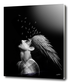 Icarus dreaming