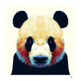 Panda - Colorful Animals
