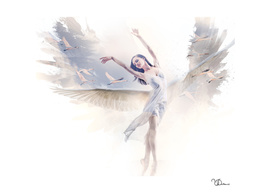 Le majestueux ballet