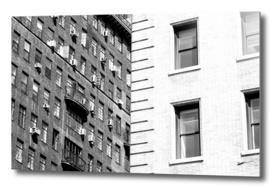 Windows of NYC 9