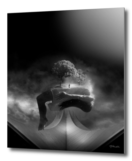 dream in black & white