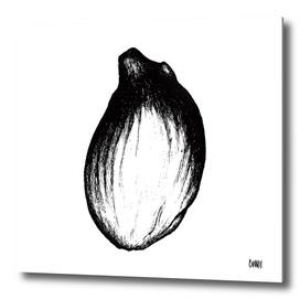 Lemon Seed