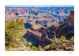View of Grand Canyon from the ridge at Mohave Point