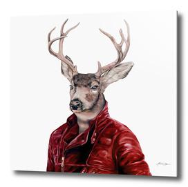 Deer in Leather