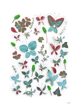 Nature Butterfly 3