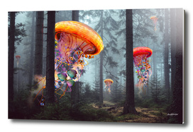Forest of Jellyfish Worlds