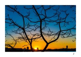 Winter Sunset On The Highline
