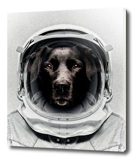 PLUTO ASTRO DOG