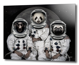 Capricorn 3 - Astronaut Animals group