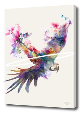 Fly Away II