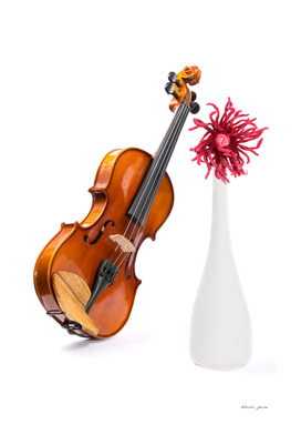 Violin, white vase with a flower