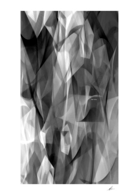 Abstract Black and White Symphony