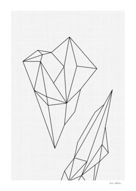 Geometric I